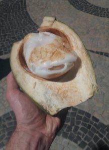čerstvá kokosová dužina k nakousnutí